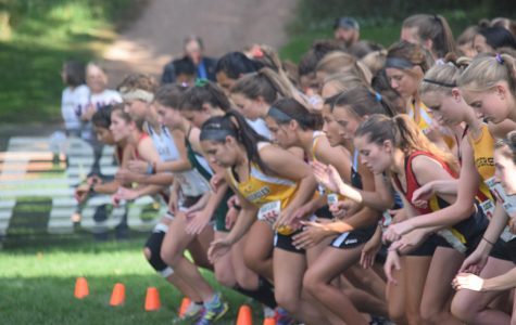 Cougar Classic: The Results Are In!