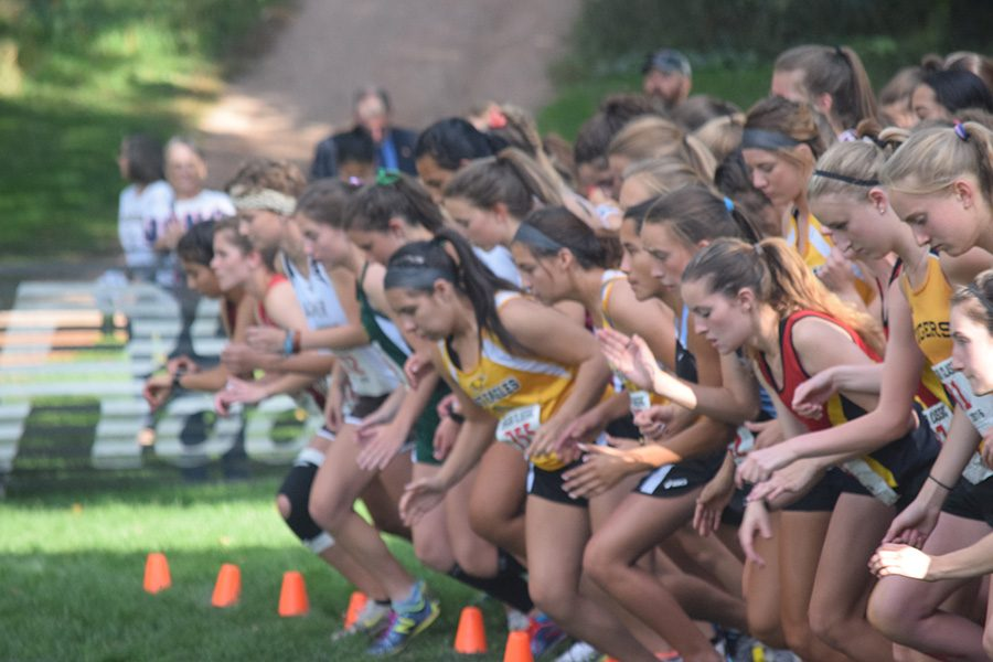 Taylor Dutton (in red) negotiates her way through the sea of humanity that is the start of the Cougar Classic Cross Country Invitational.  Each team of nine runners is only allowed a space three feet wide through which all of the runners must pass. Elbows and punches are commonplace in the 'non-contact' sport.