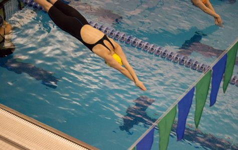 Lady Cougars Kill at Swim Meet