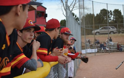Cougar Baseball Prevails over Vista and Demolishes Widefield