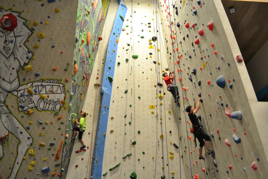 Cougars Flourish in First Climbing Competition