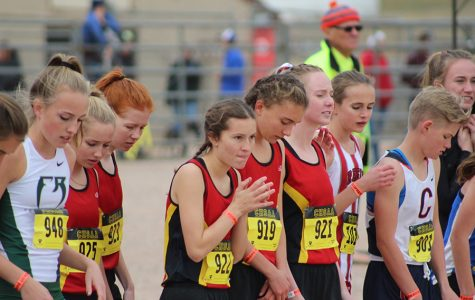 Cougars Show Improvement, but Not Enough to Move Up at Cross Country State