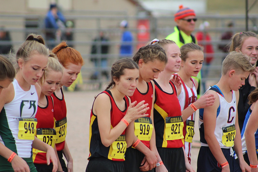 Confident in their running abilities and their season, but leery of the competition, the Cougars toe the line at State.