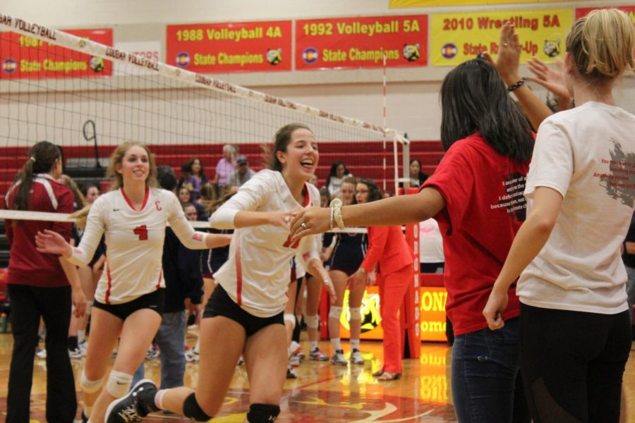 Cougars Fall Short of State Semifinals After Spectacular Season