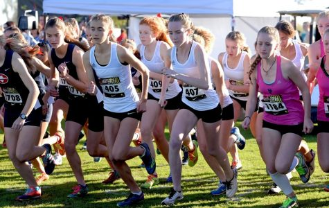 Cougar Cross Country Takes its Talents to the Desert