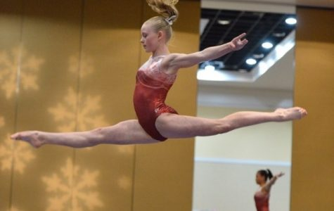 Athletes in the Spotlight: Dazzling Gymnasts
