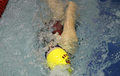 Cougars Swim Circles Around the Competition