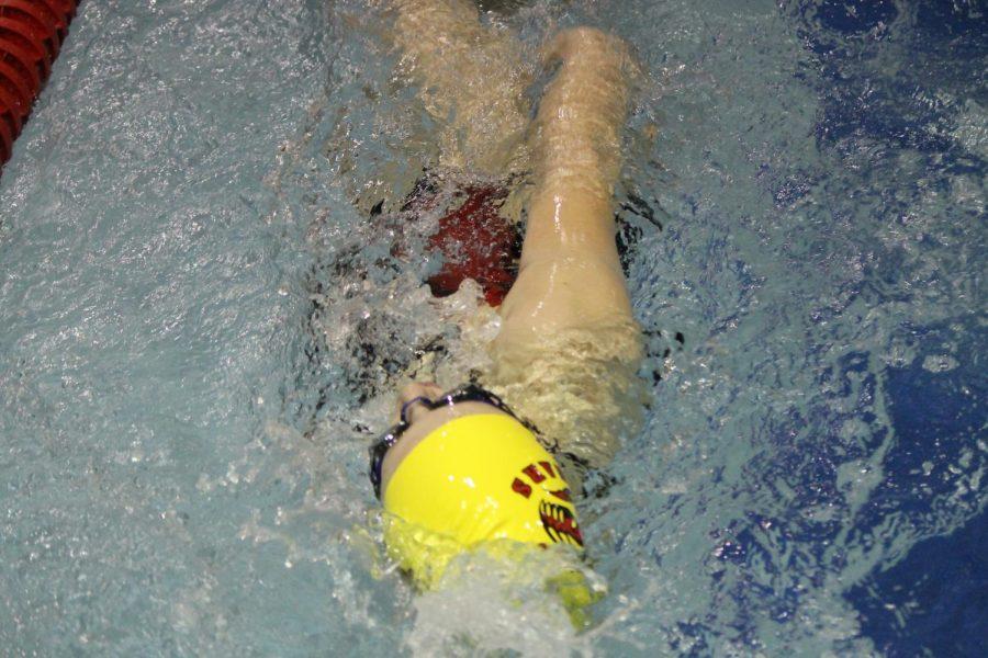 A Cougar swimmer backstrokes brilliantly.