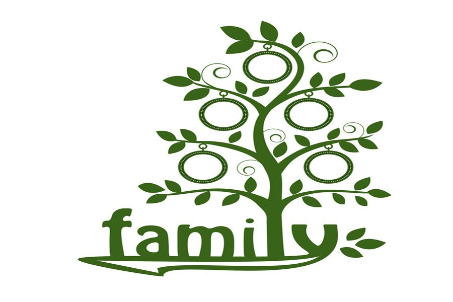Families of the Fortnight: Vaishvilles & Carters