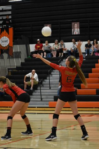 Cougars vs. Warriors in a Resilient Fight