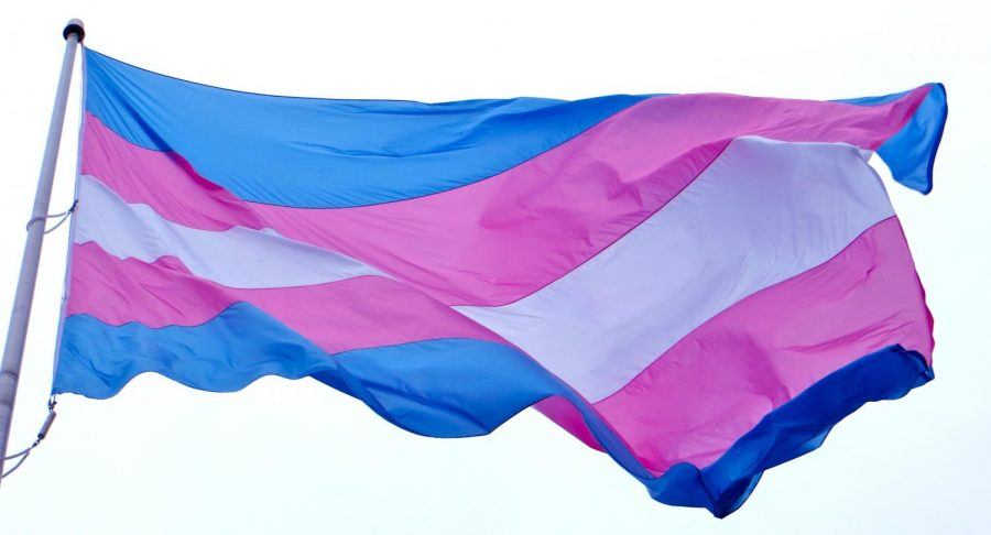 The transgender flag represents people whose gender identity does not match what they were assigned at birth.