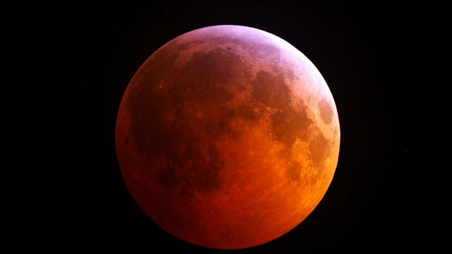 Come View The Lunar Eclipse on 1/20!