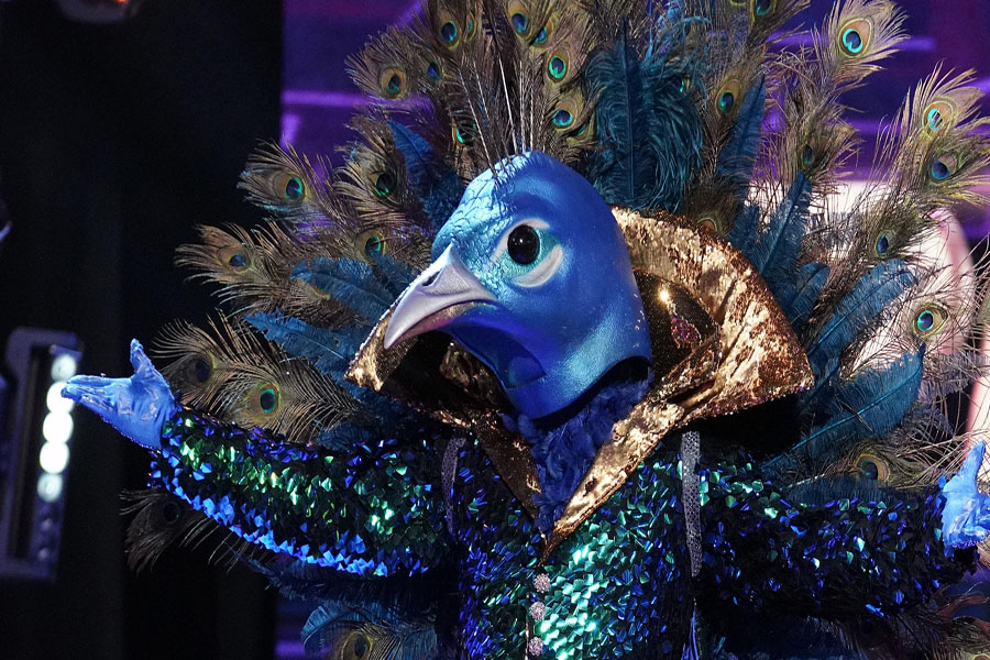 The Masked Singer dares to dangle the question ... who is the Peacock?