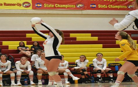 Volleyball Roars Into Post-Season