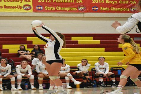 Volleyball Roars Into Post-Season