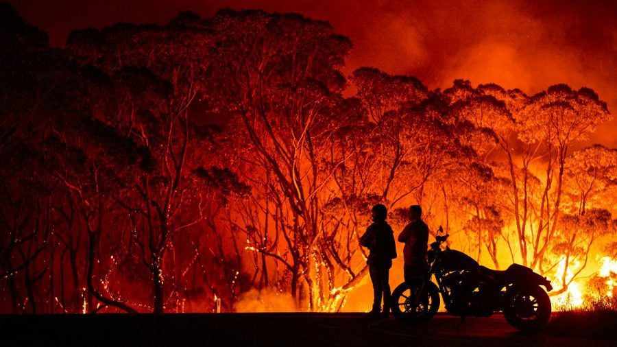 Exploitation of the Australia Bush Fires: Avoiding Scammers