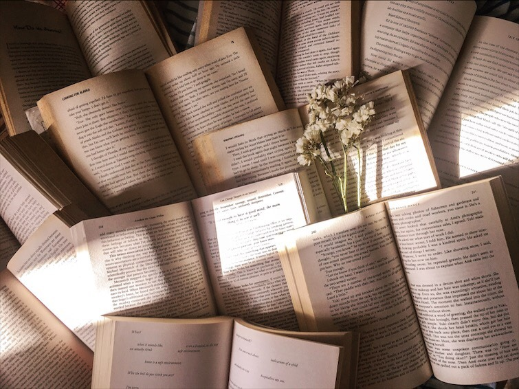 Delve Into Readers Guild!