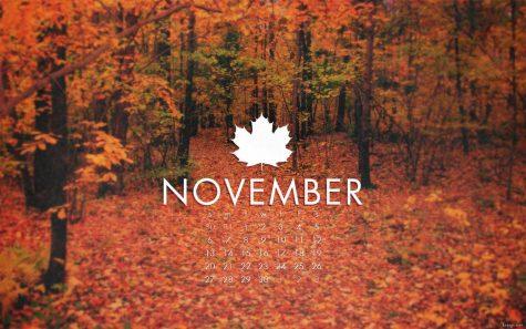 November Preview!